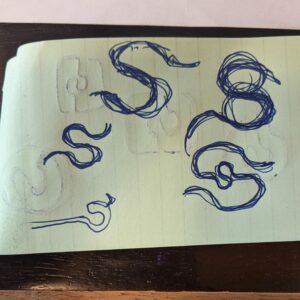 sketches of a new no tie laces logo